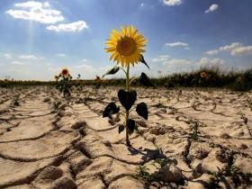 04/10/2015 Debaten en Mendoza sobre como enfrentar el Cambio Climático