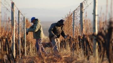La sustentabilidad en los espacios rurales, tema de un conversatorio virtual