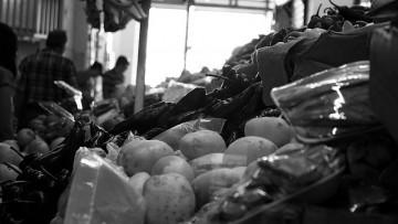 Premio para la UNCUYO por prototipo que aporta transparencia a la donación de alimentos