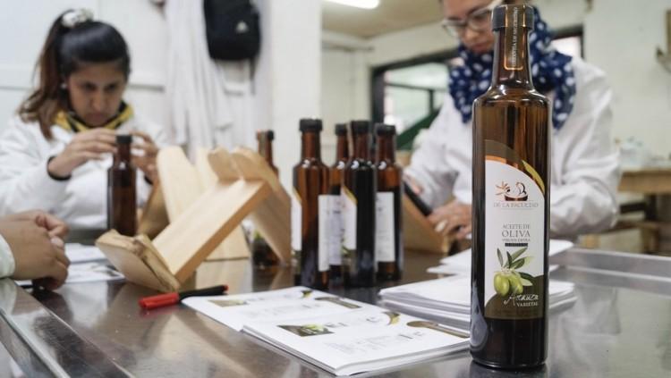 Aceites de oliva de la UNCUYO recibieron nuevos premios