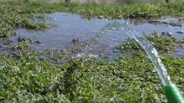 Reciben resúmenes para congreso de aguas, ambiente y energías