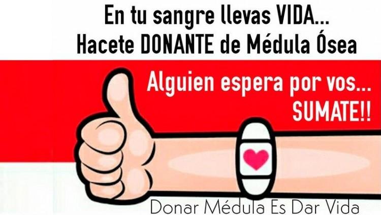 imagen que ilustra noticia La UNCUYO y el CIN contribuyen a conseguir donante de médula ósea ...
