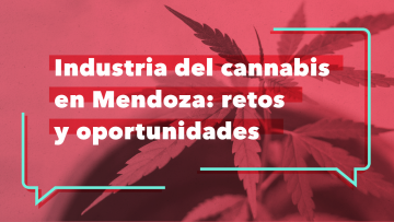 Reflexionarán sobre las potencialidades del uso medicinal del cannabis en la Provincia