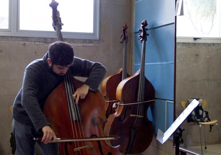 Capacitan en la interpretación de instrumentos musicales
