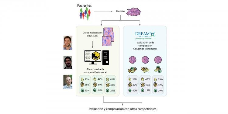 UNCUYO y Harvard se unen para desarrollar novedoso modelo bioinformático