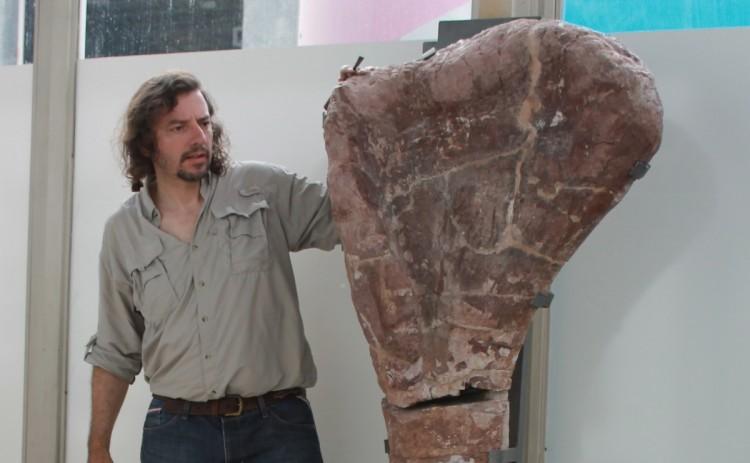 Hallaron en Malargüe uno de los dinosaurios más grandes del mundo