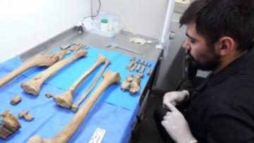 Estudiaron las consecuencias fisiológicas del trabajo en los cuerpos de antiguos habitantes