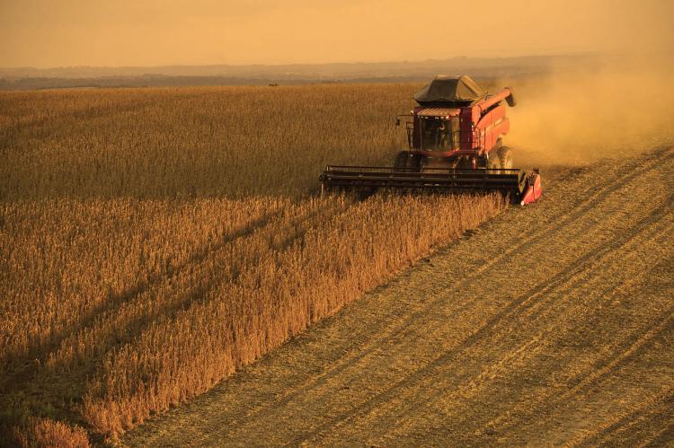 Extractivismos, agronegocios y destrucción ambiental, en un nuevo conversatorio de CLACSO