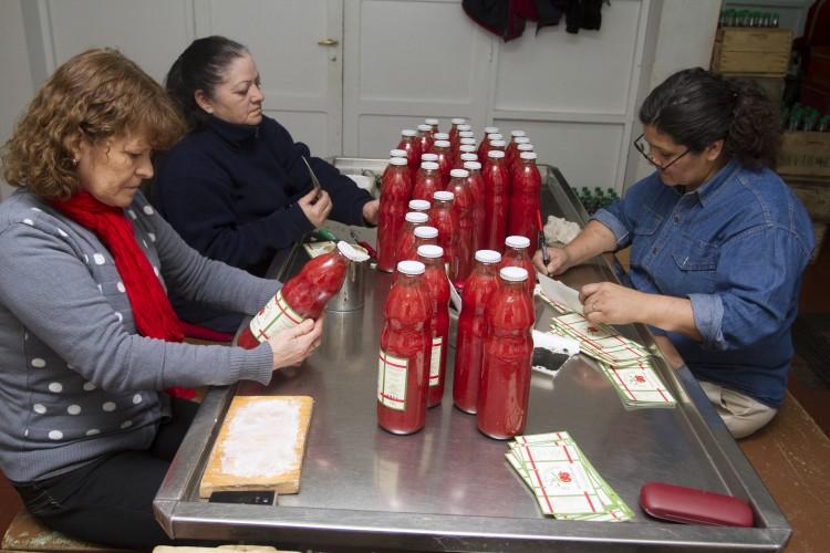 """""""Voluntariado de Acción Laboral"""": invitan a sumarse a estudiantes de la UNCUYO"""
