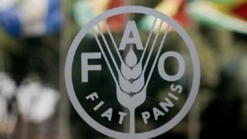 """Un dossier de Agrarias sobre """"Agroecología"""" elegido por la FAO para ser difundido en su web"""