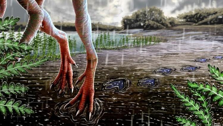 Aportan datos clave sobre el desarrollo de los primeros dinosaurios