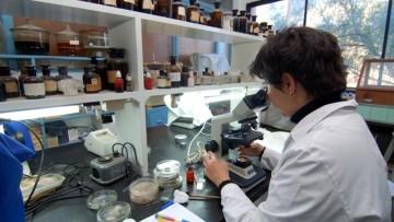 Acordaron la doble dependencia del Instituto de Medicina y Biología