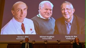 Nobel de Medicina: contribución de la FCEN sobre el descubrimiento del virus de la Hepatitis C