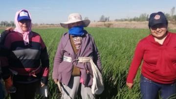 La ruralidad tiene cara de mujer: testimonios y reflexiones en su día