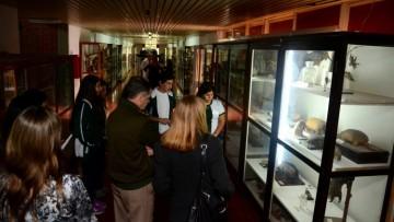 La Universidad abrirá las puertas de sus museos
