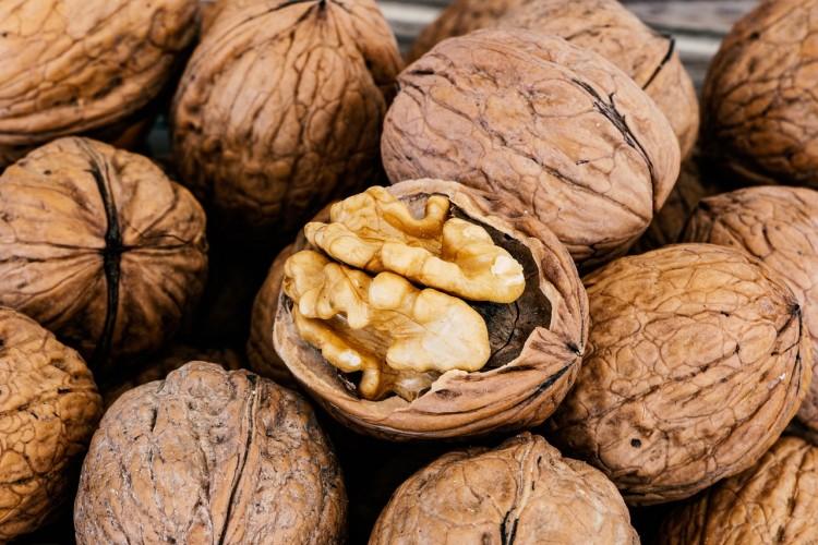 Frutos secos: la UNCUYO refuerza acciones para el crecimiento del sector