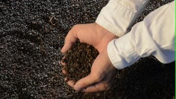 Prueban los beneficios nutricionales del orujo del Malbec