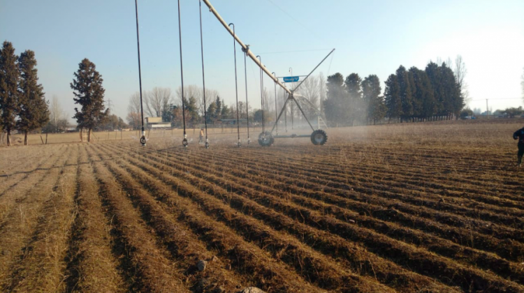 Ciencias Agrarias suma novedosa tecnología para el riego de parcelas