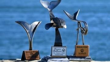 Premio Ballenas: siete estatuillas y un Oro en TV para los medios de la UNCUYO