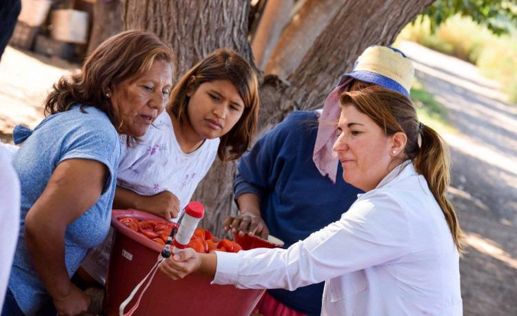 """Proyectos sociales ya pueden inscribirse a la Convocatoria """"Proyectos Mauricio López"""""""
