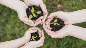 """Invitan a sumarse al """"Voluntariado Construyendo Sustentabilidad"""""""