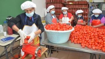 Presentaron informe anual sobre la situación laboral en Mendoza