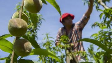 UNCuyo y Ministerio de Trabajo analizarán el futuro del empleo