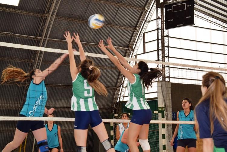 """La """"U"""" competirá en los Juegos Universitarios Regionales"""