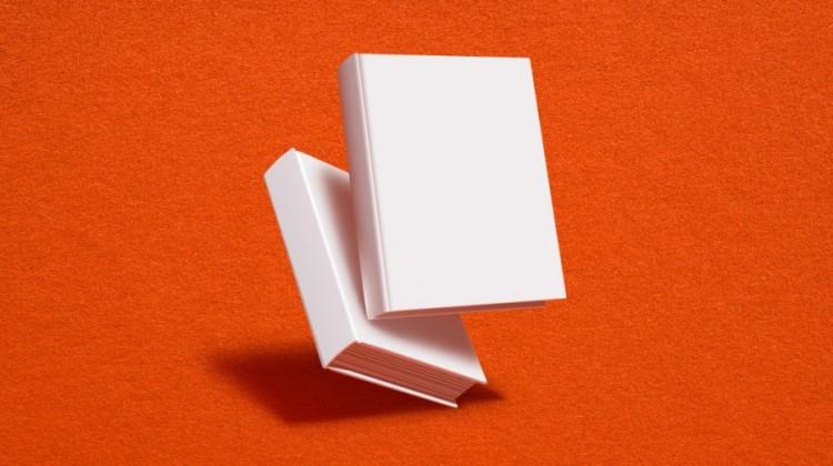 Oportunidad para diseñar portadas de un libro de la AUGM