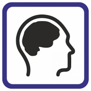 Si interactuás con una persona con discapacidad intelectual