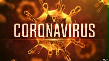 Call for Researchers interested in Coronavirus